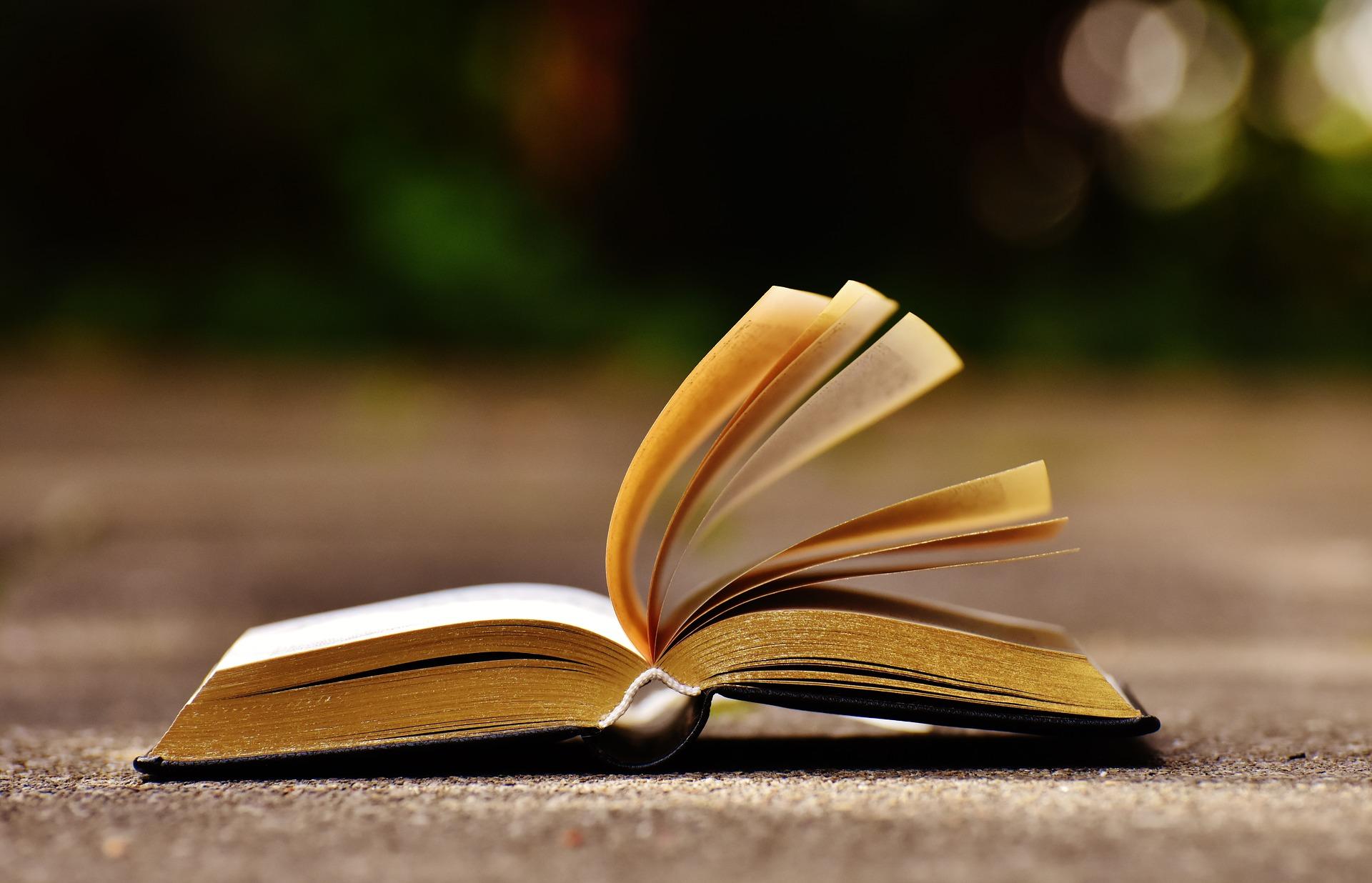 book-1738609_1920